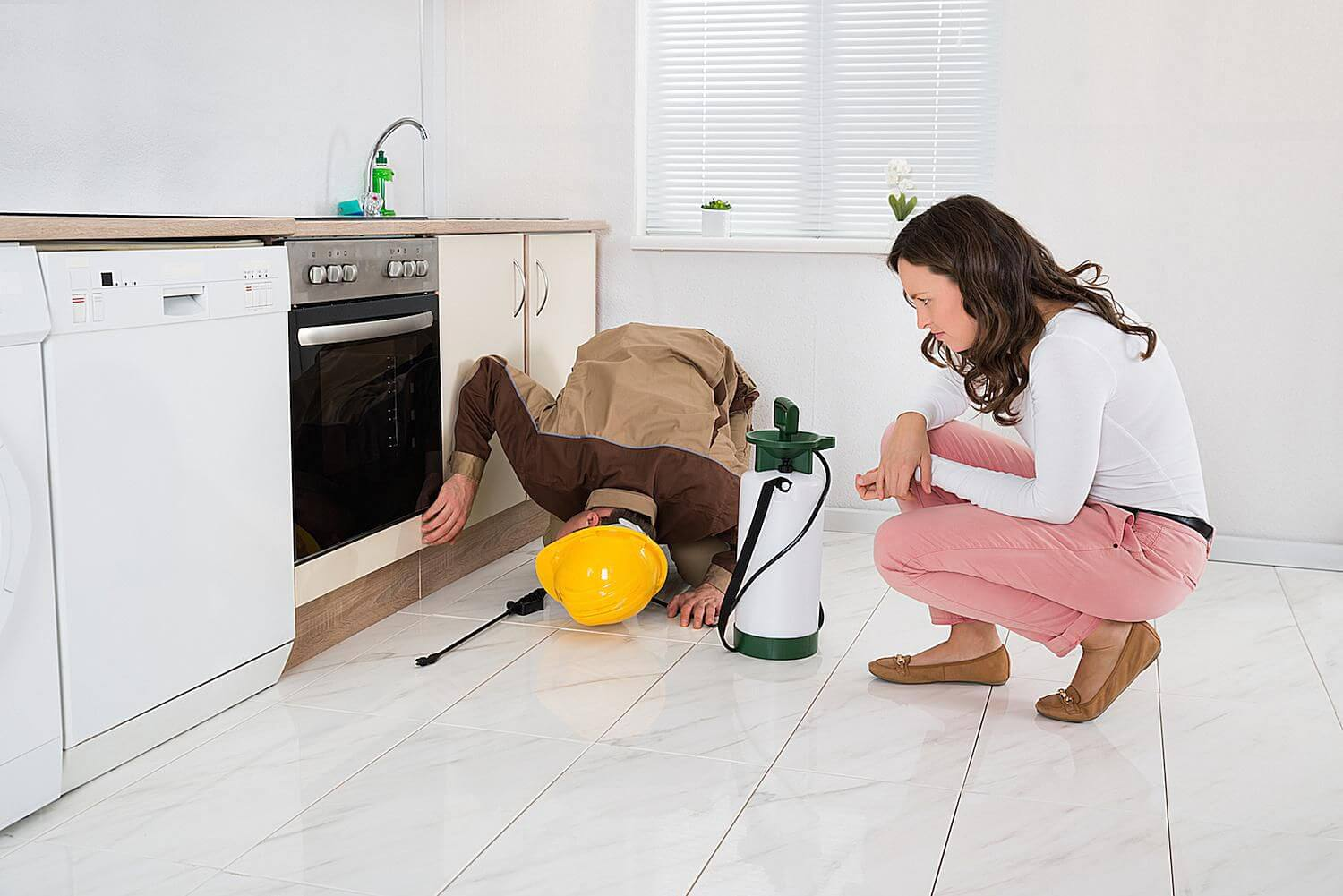 Why it's essential to have a pest inspection in Gold Coast